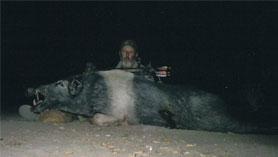 large boar and hunter