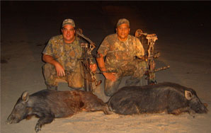 Two hunters and two pigs